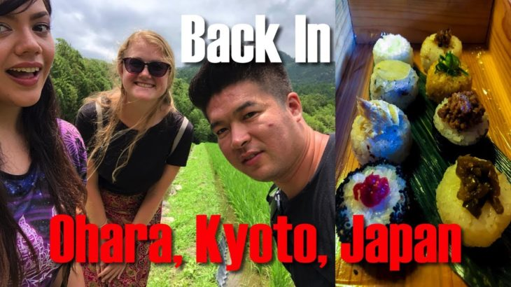 The Return to Ohara, Kyoto, Japan | Sightseeing, Food, & Adventure