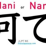 Learn Japanese Grammar | Phrase | Nani or Nan なに なん 何 | Nani de, Nan de, なにで, なんで, 何で | #60