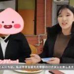 HUFS Peer Tutoring Japanese