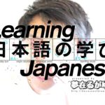 """「Learn Japanese」 Dictionary-Form VERB必要がある as """"need to, have to VERB"""""""