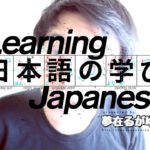 "「Learn Japanese」 (NOUN/VERB) + 通り(に) as ""in accordance with (NOUN/VERB)"""