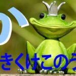 """「か」の歌。あいうえおのうた Japanese alphabet """"ka"""" song"""