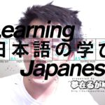 "「Learn Japanese」 NOUN + のよう(な/に) ____ as ""like NOUN"""