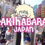 ANIME PARADISE (Akihabara Japan Day 1)