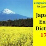 Comprehensive Vocabulary for Learning Japanese: Japanese-English Dictionary 17000