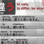 JAPANESE Verb CHIGAU #38 – Learning with Marcello Master Piggy