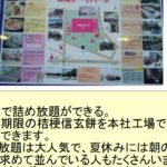 Kikyou ShingenMochi rice cakes – Learn Japanese!