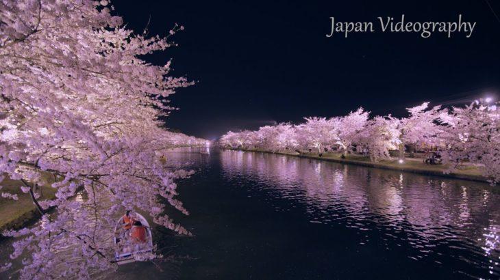 [8K]HIROSAKI 日本一の春の絶景 弘前公園の美しい桜 Amazing Cherry Blossoms View at Hirosaki Park, Aomori Japan