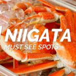 All about Niigata-Must see spots in Niigata | Japan Travel Guide