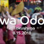 Awa Odori (Awa Dansing Festival) in Tokushima, Japan 2018