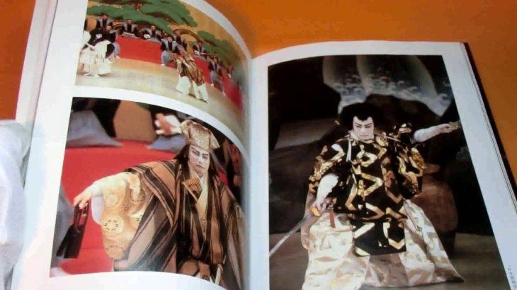 From Ebizo to Danjuro – Ichikawa Danjuro XII kabuki actor book japan rare #0286