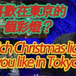 Introducing Christmas lights in Tokyo Japan / 介紹在東京聖誕彩燈 / 🇯🇵 Tokyo Travel Guide 🇯🇵【日本旅遊】