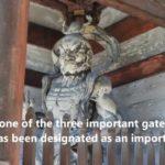 Japanese Sightseeing Vol.8 Ninna-ji Temple(仁和寺)
