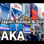 【Osaka Sightseeing】Walking Osaka,Japan Namba & Dotonbori【Time Lapse】【iPhoneX撮影】