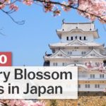 Top 10 Cherry Blossom Spots in Japan | japan-guide.com