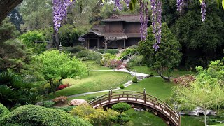 Visit Japan | Kyoto Botanical Garden | the Kyoto Prefectural Botanical Garden