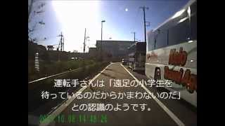 Why Japanese Sightseeing Bus ?