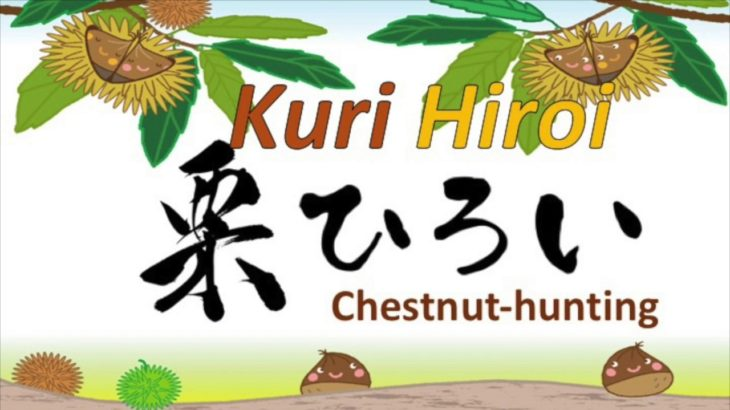 栗拾い【Chestnut-Hunting】 Japanese CUlture