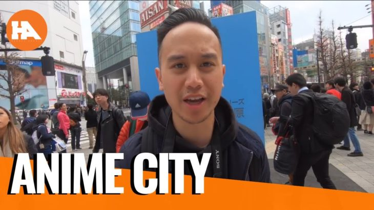 Japan Vlog: Akihabara Anime City!