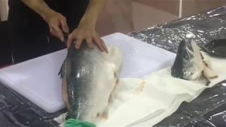 Japanese food – How To Fillet a Whole Salmon – The art of preparing sushi and sashimi