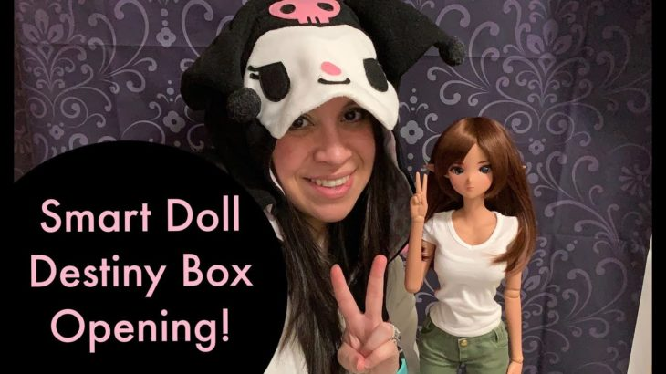 Smart Doll Destiny Box Opening! (Culture Japan Anime Doll)