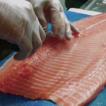 easy way to cut salmon fish for sushi japanese food ||how to cut salmom fish?