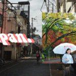 euphoria: a japan vlog 🌸 | sightseeing in OSAKA, NARA, and TOKYO