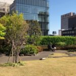 kabuki theater: the roof top garden with Japanese style Ginza Kabuk itheater beautiful and calm