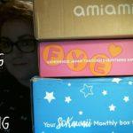 Anime/Japan Boxes! SoKawaii Box/Doki Doki Crate/Amiami Order