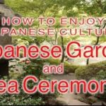 HOW TO ENJOY JAPANESE CULTURE: Japanese Garden and tea ceremony