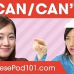 Potential Form: Can & Can't – Basic Japanese Grammar