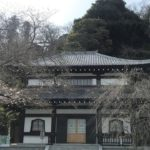 Tokyo Temple and Japanese Food