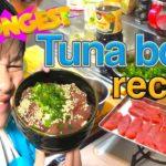 Japanese Food-TUNA sashimi bowl Japanese comedy cooking