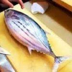 Japanese Street Food   Seared Bonito and Sushi 日本街頭美食 – 鰹魚