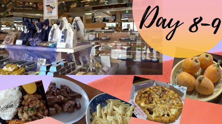 Japanese Sweets Shop (Chidorya) | Food trip | Day 8-9