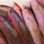 BANANA FISH SEAFOOD SASHIMI – Japanese street food