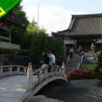 GERMANY VLOG | Exploring the 'Japantag 2017' ⛩️ The Japanese culture scene in Düsseldorf | VlogDave