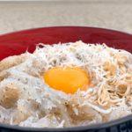 JAPANESE FOOD DOROME SHIRASUDON 【WHITEBAIT IN KOCHI】