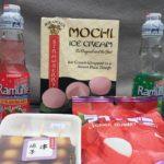 JAPANESE FOOD REVIEW || LittleMantisTV
