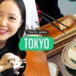 Japanese Makeup Shopping, Hedgehog Cuddling & Learning to Cook a Japanese Meal | TOKYO VLOG
