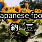 Japanese food        納   豆
