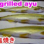 Salt-grilled ayu鮎の塩焼きを旨く作る7point