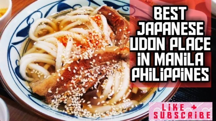 Best Japanese & Affordable Udon in Metro Manila!