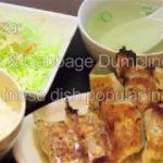 GYOZA Japanese favorite food