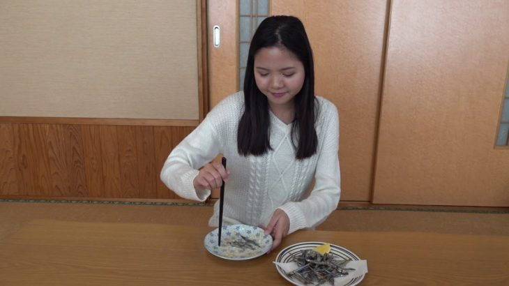 Introduction of Japanese food with Myanmar Language part 2