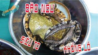 [Japanese Food] Kết quả của việc ăn Bào Ngư SIÊU TO KHỔNG LỒ