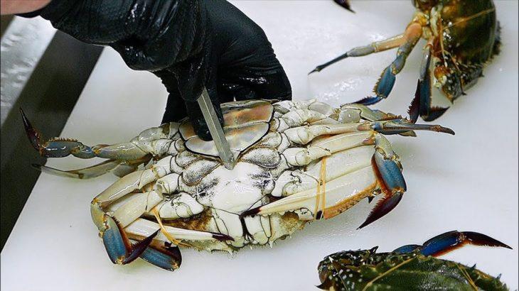 Japanese Food – RED LOBSTER Scorpion Crabs Blue Crab Sashimi Teruzushi Japan