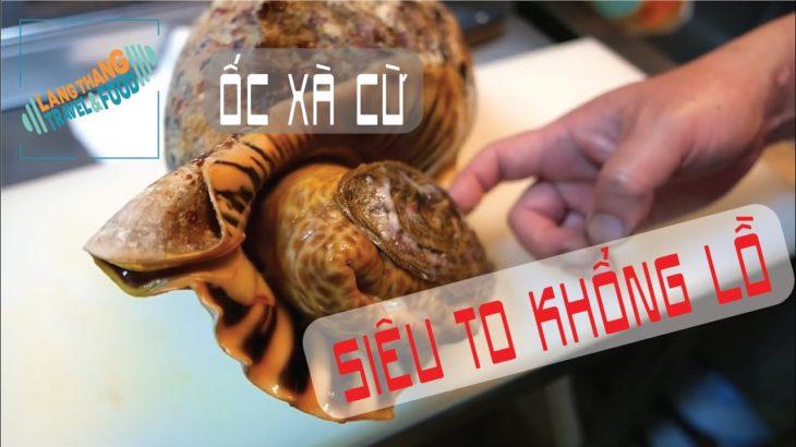 [Japanese Food] Ốc xà cừ SIÊU TO KHỔNG LỒ ăn mãi mới hết