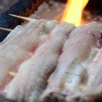 Japanese Street Food – GRILLED EEL Barbecue Tokyo