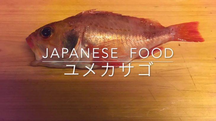 夢見るユメカサゴおろし方【japanese  food  washoku】